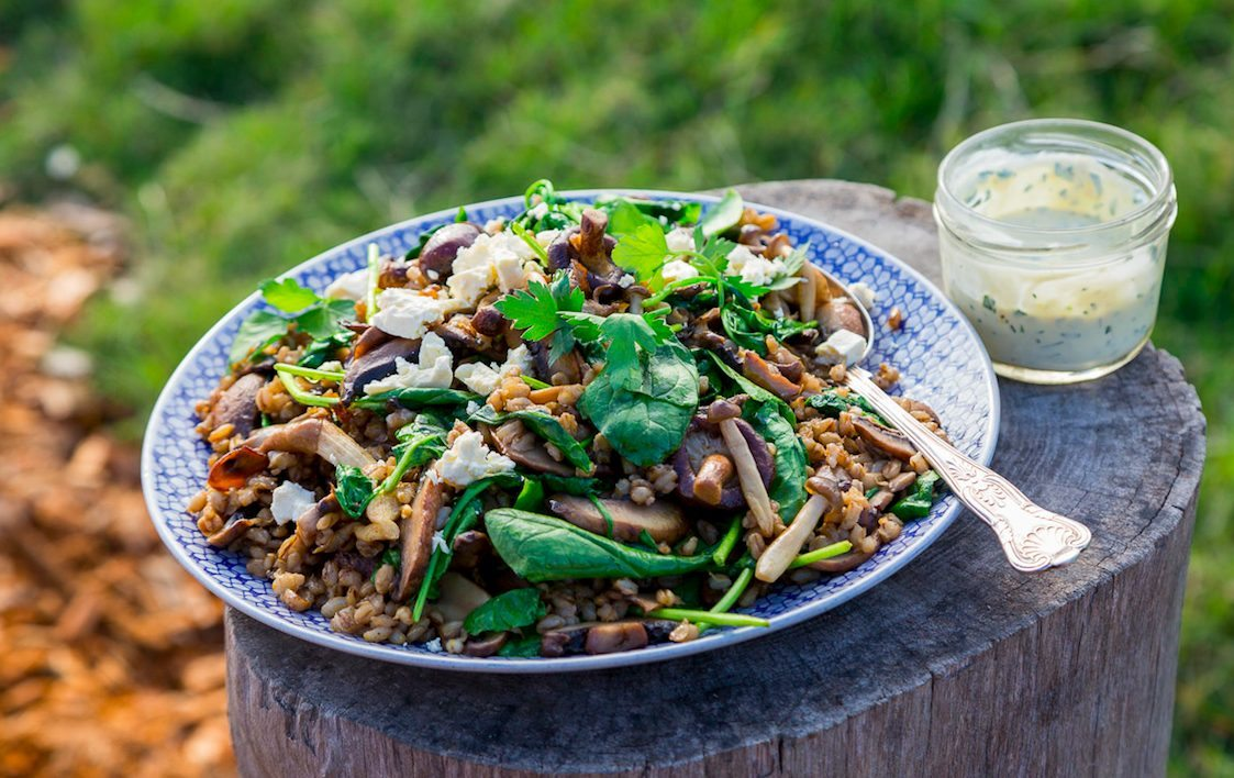 toasted-barley-spinach-and-wild-mushroom-salad-1