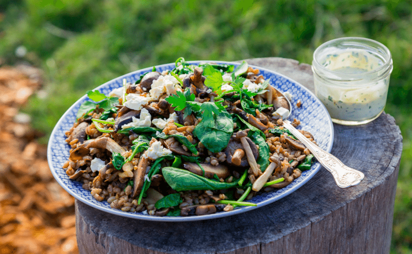 Wild Mushroom and Barley Salad